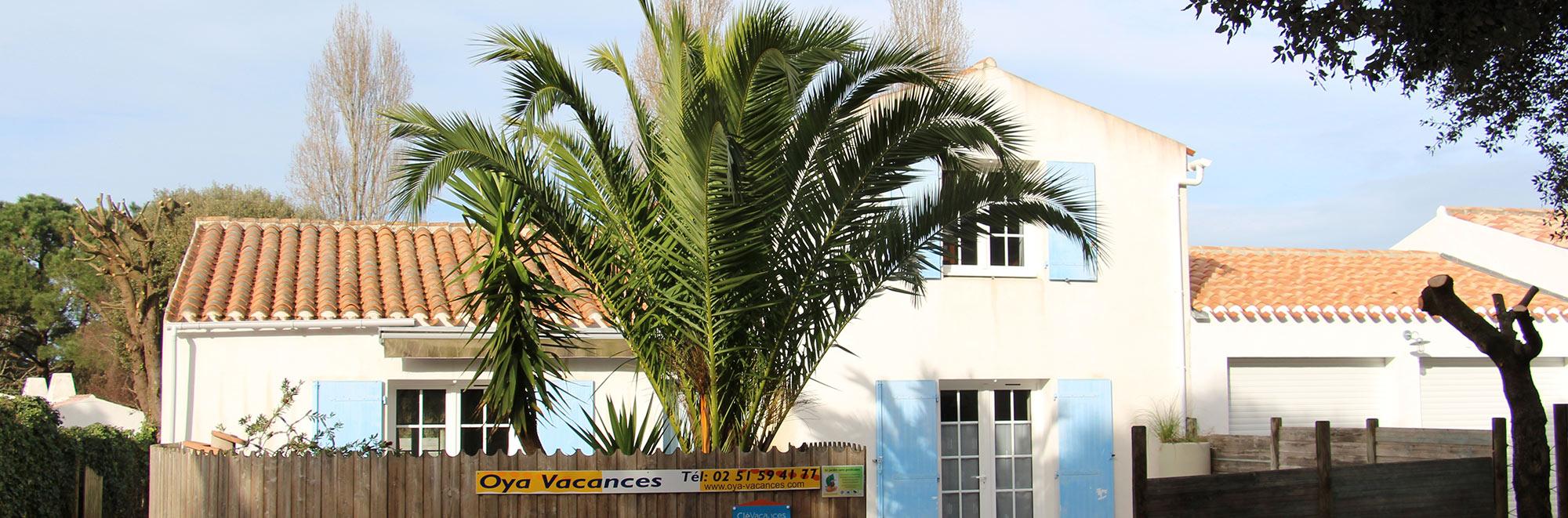 Maison de vacances avec palmier