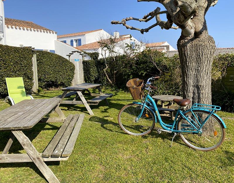 Location vélo classique adulte