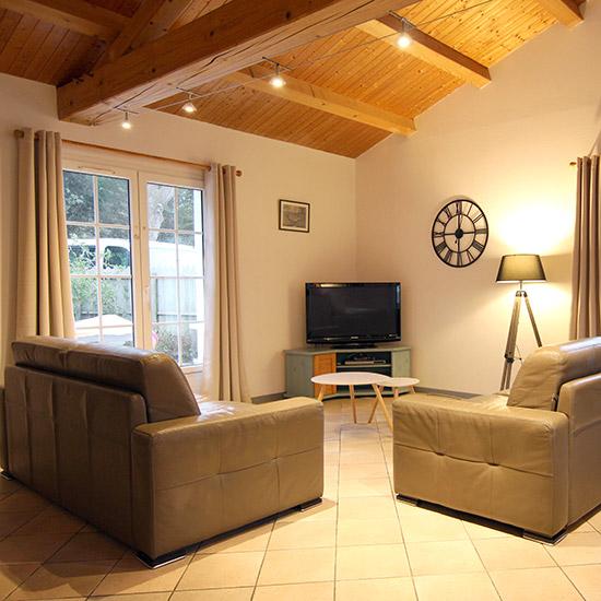 Salon avec canapés et télévision