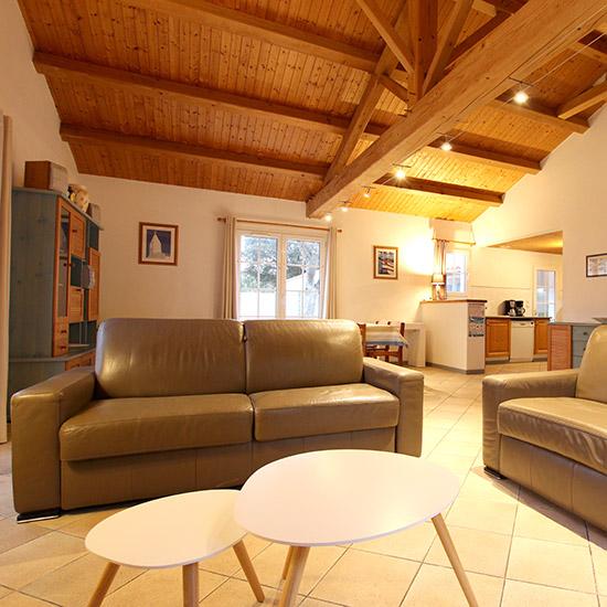 Salon cosy avec canapé cuir